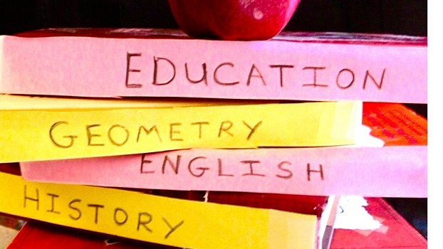 ednext-oct17-blog-petrilli-charter-twenty20