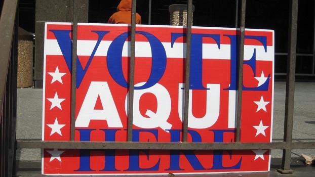 voting_2010_016